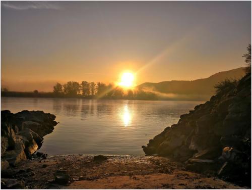 Ráno u Dunaje